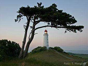 Leutturm auf der Insel Hiddensee (Quelle: Wikipedia, Foto: T. Mangner)