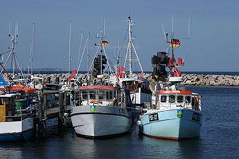 Fischerboote im Seehafen »Marina Glowe«